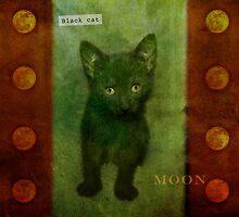Black cat moon by Lynn Starner