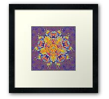 Psychedelic jungle kaleidoscope ornament 21 Framed Print