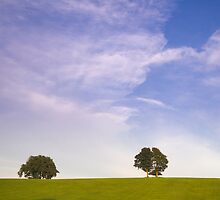 Green field blue sky and trees by chris2766
