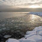 Mini Ice Floes on the Lake by Georgia Mizuleva
