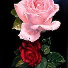 roses by Hidemi Tada
