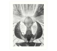 Water perls on a Orchid Art Print