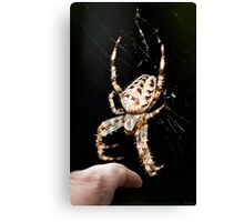 Spiders - they get bigger and bigger!  Canvas Print