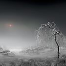 Frosted Sun by Igor Zenin