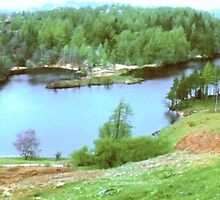 Tarn Hows, Coniston UK by GeorgeOne