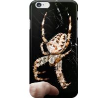 Spiders - they get bigger and bigger!  iPhone Case/Skin
