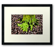 An Ent Foot Framed Print