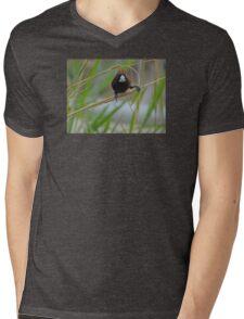 BIRD BRAIN! Mens V-Neck T-Shirt