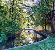 Autumn Morning in Morden Hall Park by Ludwig Wagner