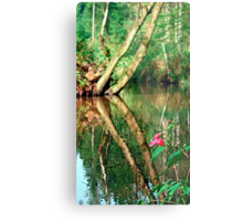 Lonely flower guarding the stream | landscape photography Metal Print