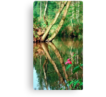 Lonely flower guarding the stream | landscape photography Canvas Print