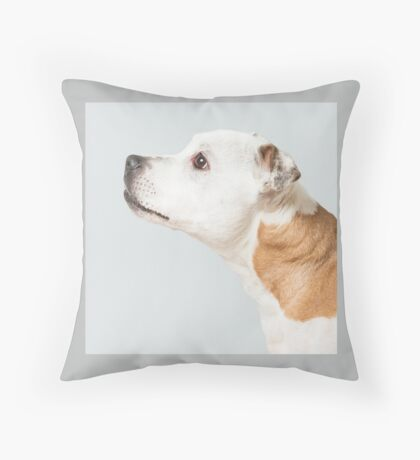 Sumi-e cushion Throw Pillow