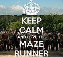 The Maze Runner by ejgdrd