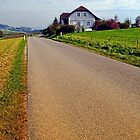 Country road into vibrant scenery | landscape photography by Patrick Jobst