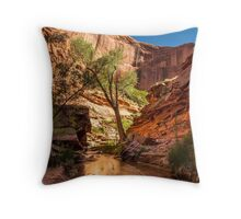 Desert Canyon Paradise - Coyote Gulch - Escalante, Utah Throw Pillow