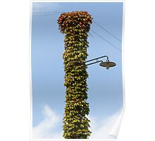 lamppost wrapped in ivy Poster