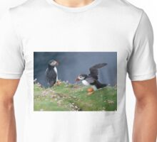 Pair of Puffins Unisex T-Shirt