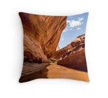 Lower Coyote Gulch - Grand Staircase - Escalante, Utah Throw Pillow