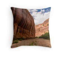 Sandstone Varnish Cliff - Coyote Gulch - Grand Staircase Escalante, Utah Throw Pillow