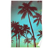 Vintage Tropical Palms Poster