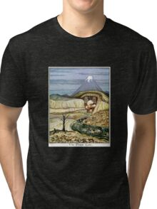 The Lonely Mountain Tri-blend T-Shirt