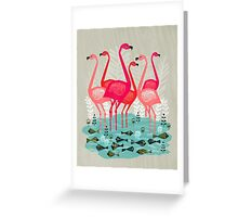 Flamingos by Andrea Lauren  Greeting Card