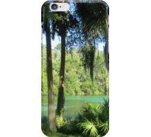 Picnic Paradise iPhone Case/Skin