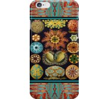 ERNST HAECKEL,FRAMED LONG2 iPhone Case/Skin