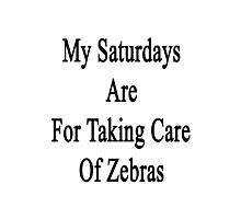 My Saturdays Are For Taking Care Of Zebras  Photographic Print