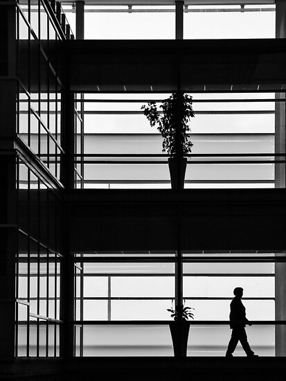 Plants in the city by awefaul