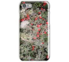 Frosty Berries iPhone Case/Skin