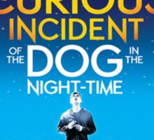 Curious Incident of the Dog in the Night Time Playbill Sticker
