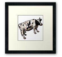 Cow Hefer Framed Print