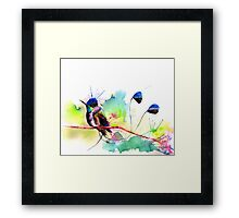 """Spatuletail Hummingbird"" Framed Print"