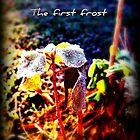 The First Frost by MusicandWriting