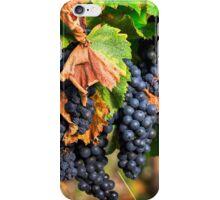 Ripe Grapes iPhone Case/Skin