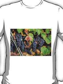 Ripe Grapes T-Shirt
