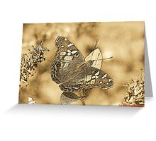 American Painted Lady Sumi-e Greeting Card