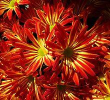 Fiery Hot Flowers by WildestArt