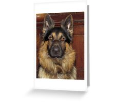Time for a walk Greeting Card