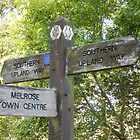 fingerpost - Melrose - Southern Upland Way by Babz Runcie