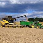 Harvest Time by Barrie Woodward