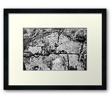 Twisted Wire Framed Print