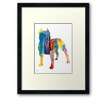 Pit Bull 4 Framed Print