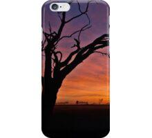 Old Tree Sunrise - Tongala Victoria Australia iPhone Case/Skin