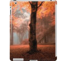 Fantasy - Mount Wilson - The HDR Experience iPad Case/Skin