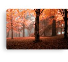 Fantasy - Mount Wilson - The HDR Experience Canvas Print