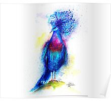 """Blue Crowned Pigeon"" Poster"