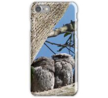 Tawny Frogmouth and babies iPhone Case/Skin