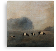 Black and White Striped Cows in Pasture Canvas Print